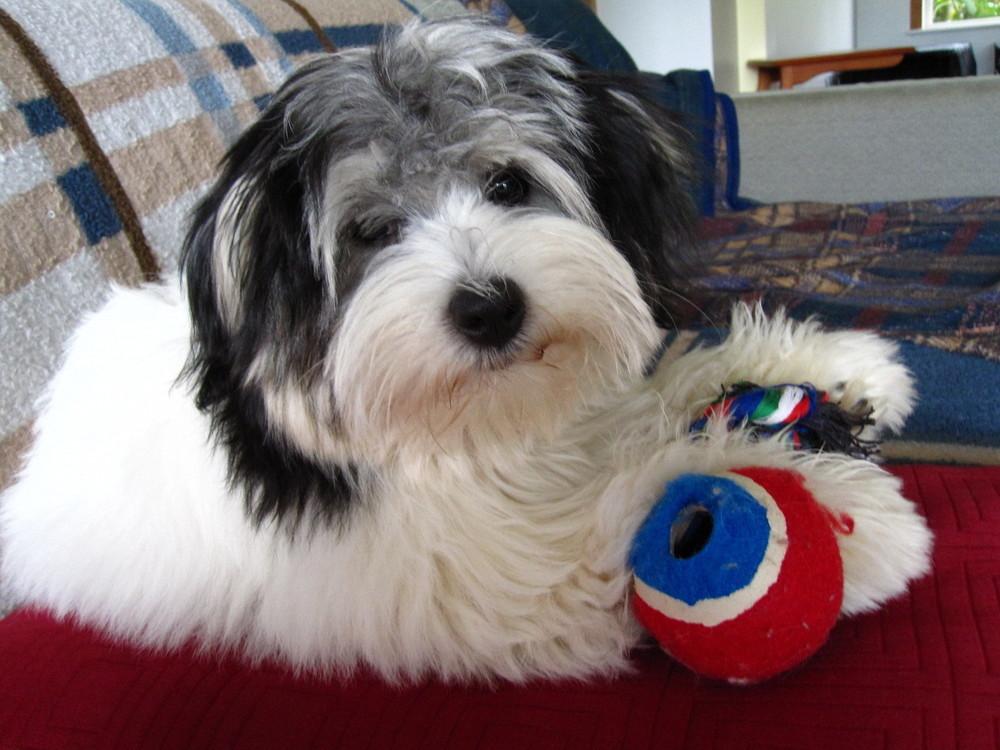 Sept 2010 - 5 months old