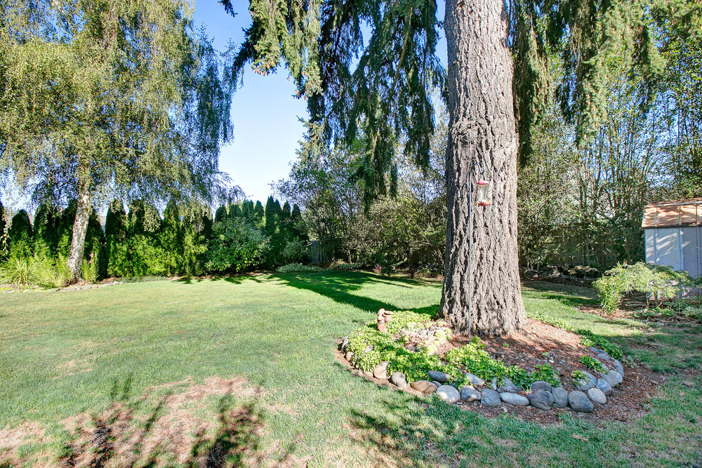 27_1334 Willamette Falls_5871.jpg