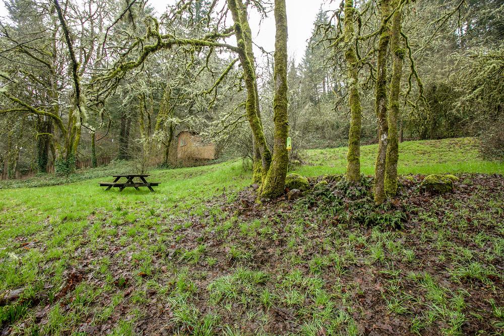 39_18858 Upper Midhill Dr. West LInn_4.jpg