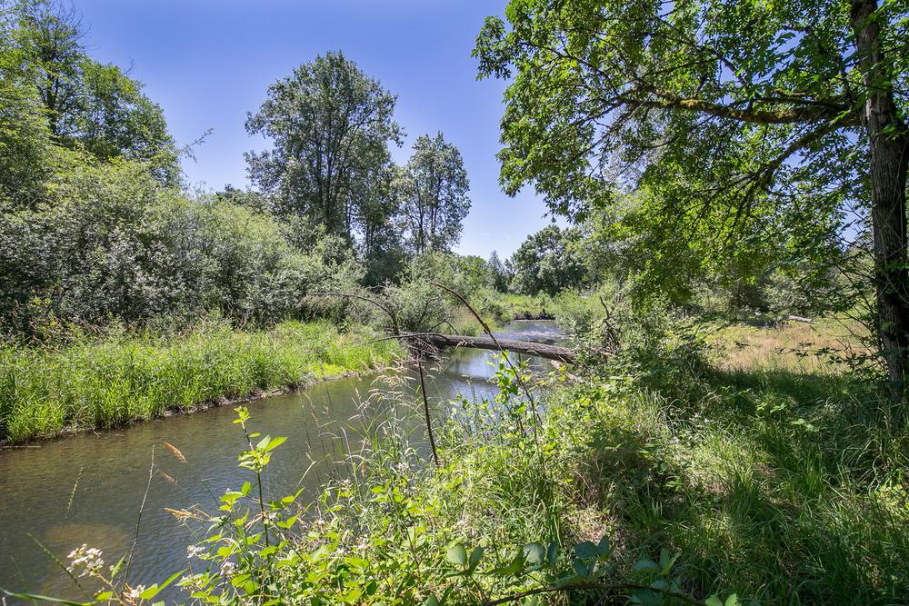 051_29811 S Beavercreek Rd Mulino_MG_1848-HDR.jpg