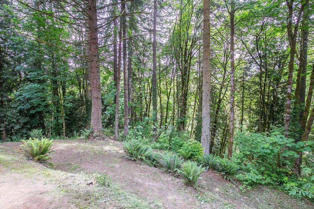 039_18700 NW Logie Trail Rd_MG_4879-HDR.jpg
