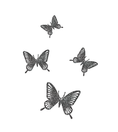 butterflies transparent background-03.png