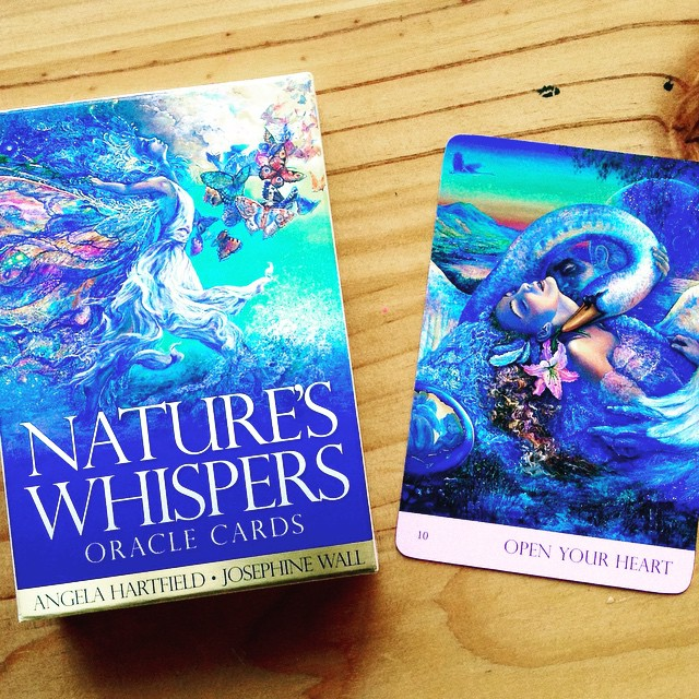 Nature's Whispers Oracle Cards - My favourite deck.