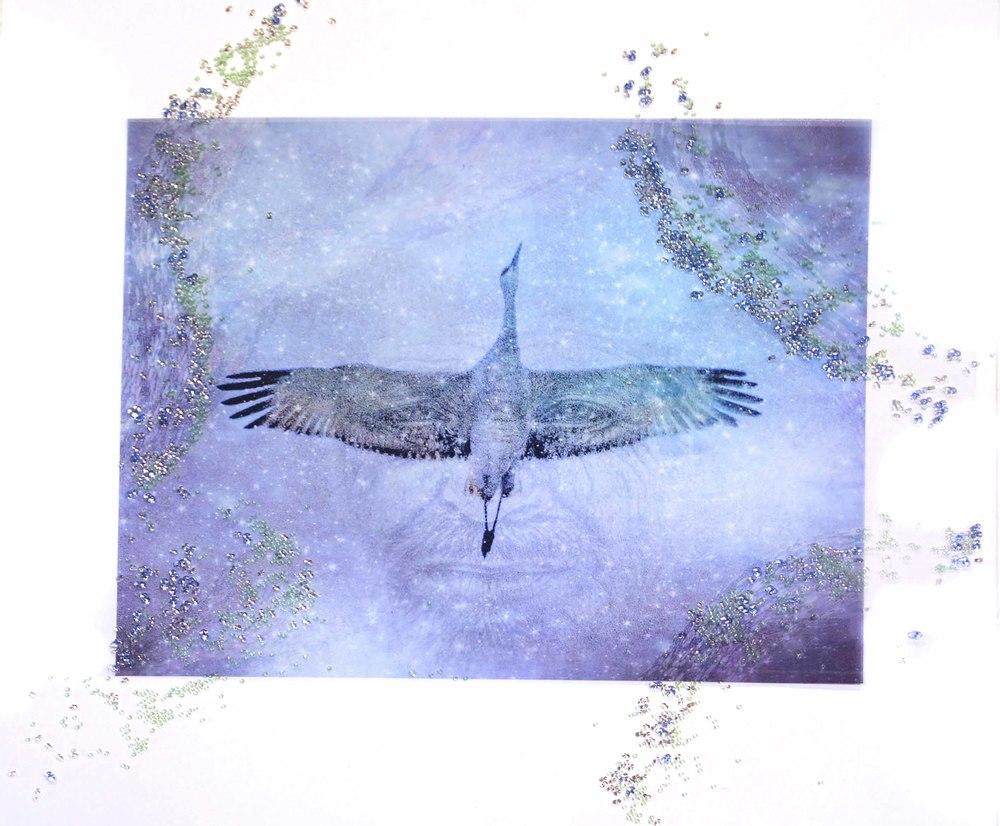 09 Crane Lady.jpg