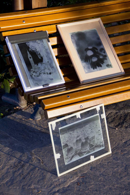 cyanotype photos.jpg
