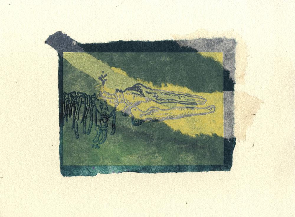 scheletro con carta colorata.jpg