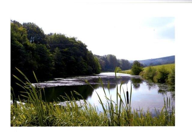 Hyde Lake.jpg