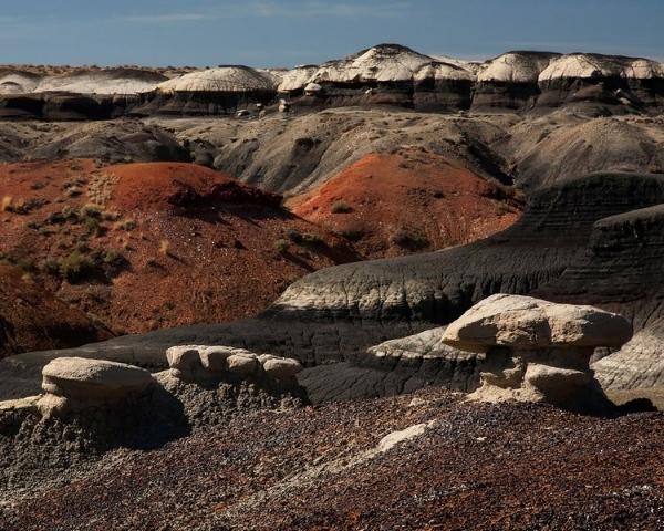 Bisti Badlands, Bisti/De-Na-Zin Wilderness, New Mexico.Photo©2016 Lee Anne White.