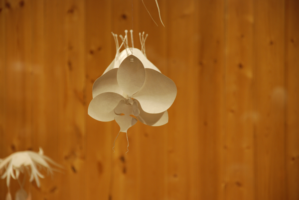 paperflowers2.png