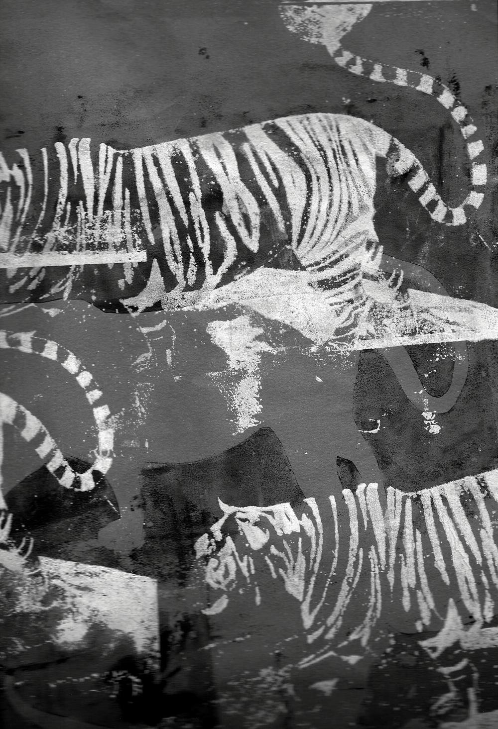tigerflyer2.jpg