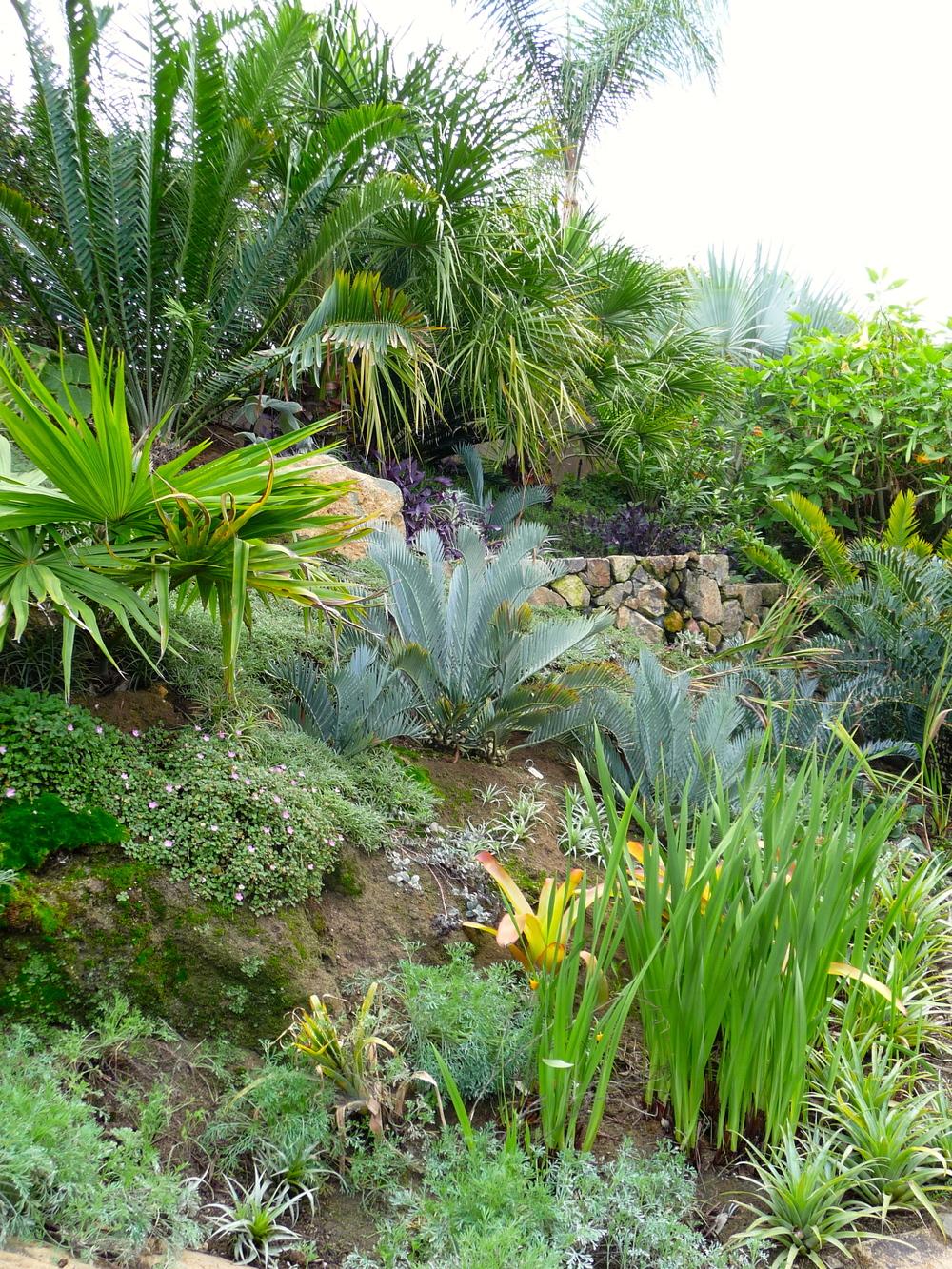 Riedler garden hillside.