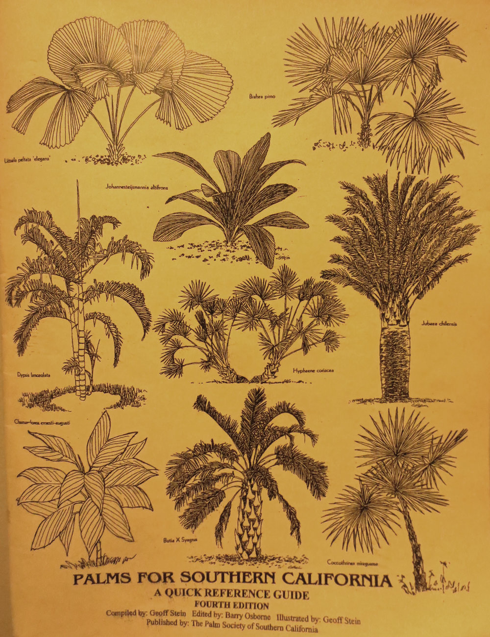 Palms for Southern California - Truly an essential tool for the beginner palm enthusiast!