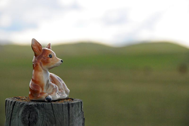 Cowboy Trail Deer.jpg