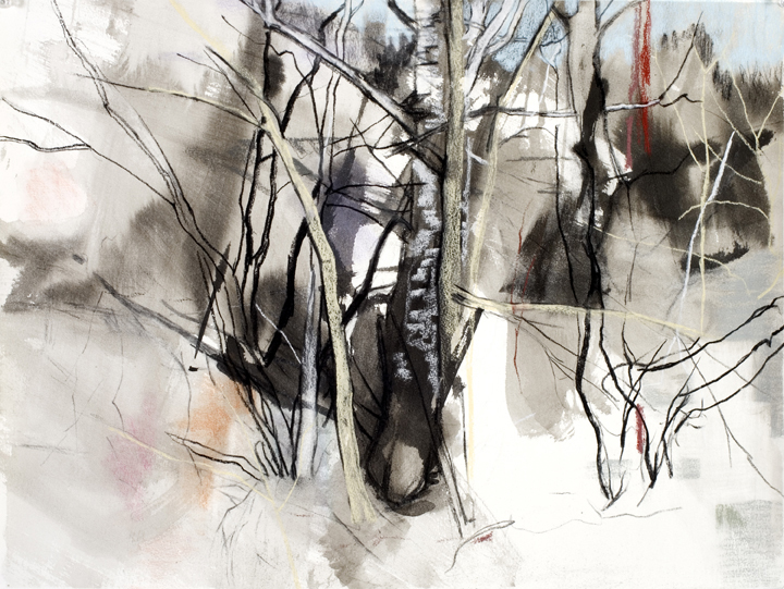 Amongst the trees, Vermont - Mixed media on paper 2010