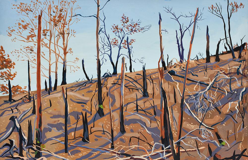 Strathewan landscape after the fire
