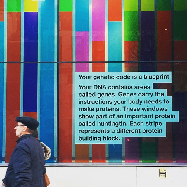 Work by Pentagram gracing the windows of the Wellcome Trust