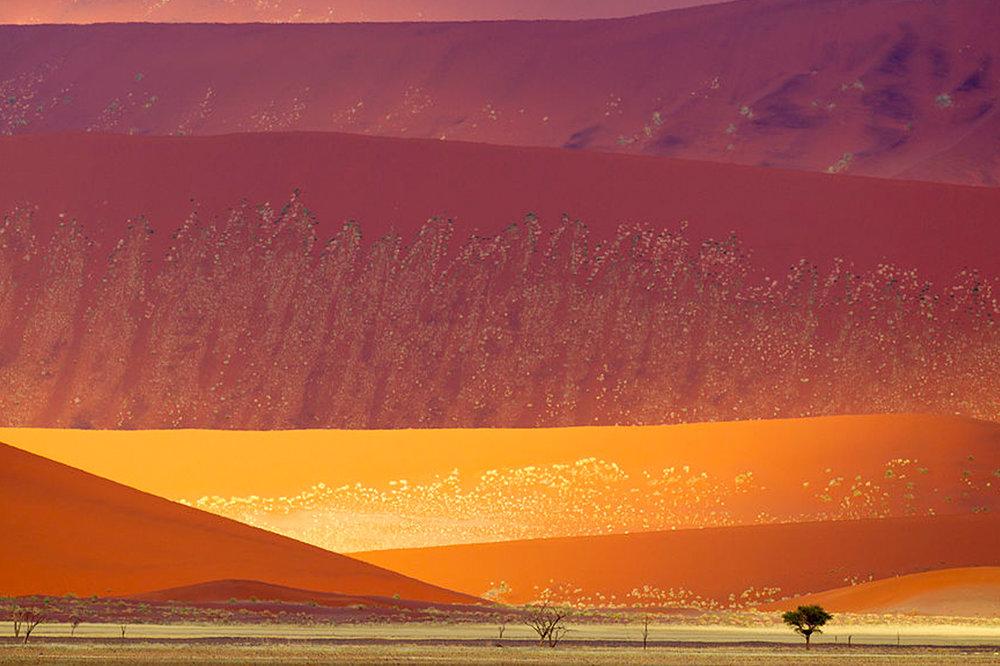 Namibie2.jpg