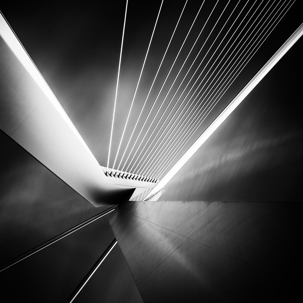 20130106-Erasmus-Bridge-Rotterdam.jpg