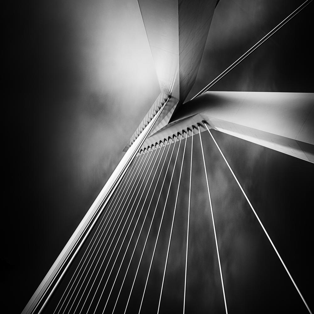 20130106-Rotterdam-Erasmus-Bridge.jpg