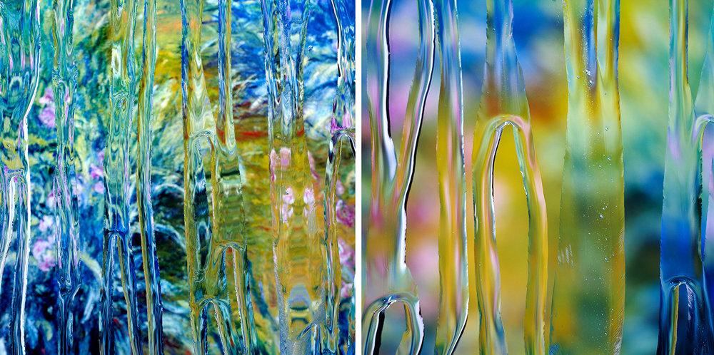 Monet-Iris-1and2.jpg