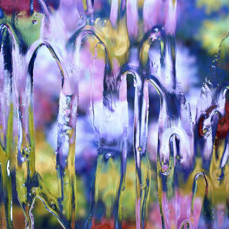 After Claude Monet: Chrysanthemums 2, 1897, 2017