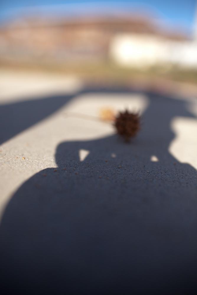 Amphora, Shadow. November 2011.
