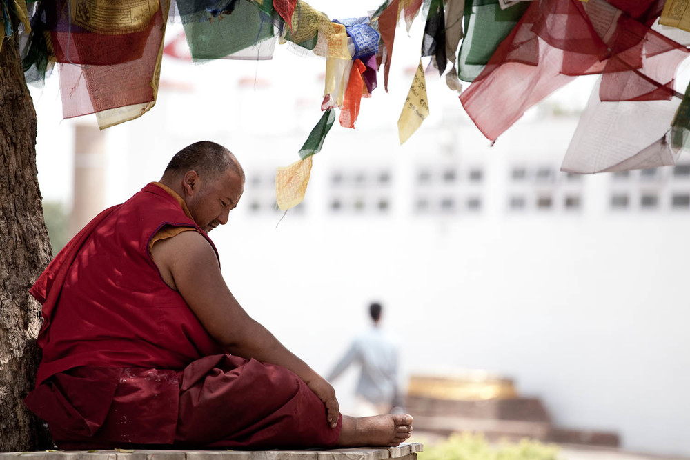 Meditation-buddhist-monk-lumbini-nepal-asia-travel