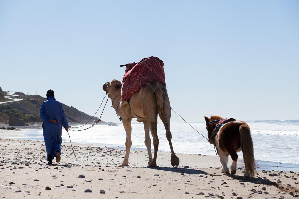 Morocco-1131.jpg