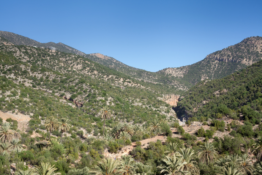 Morocco-1297.jpg