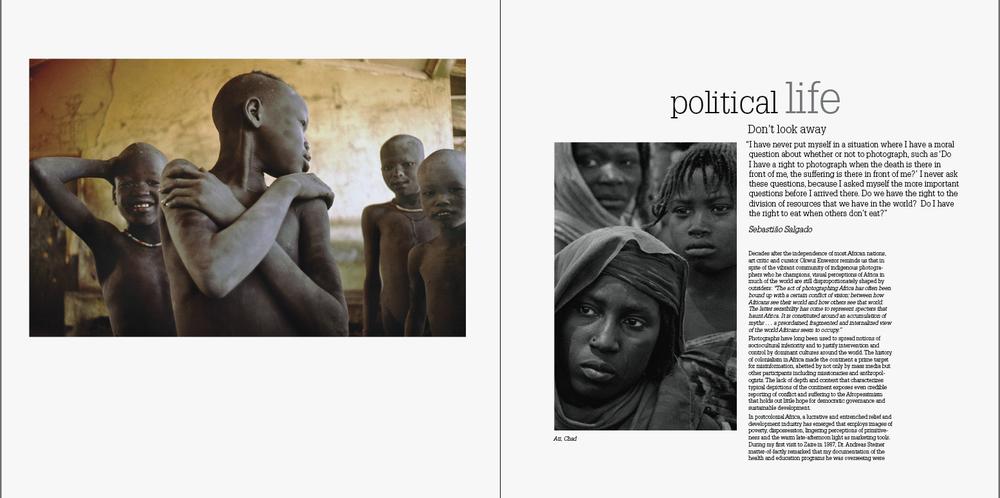 POLITICAL LIFE.jpg