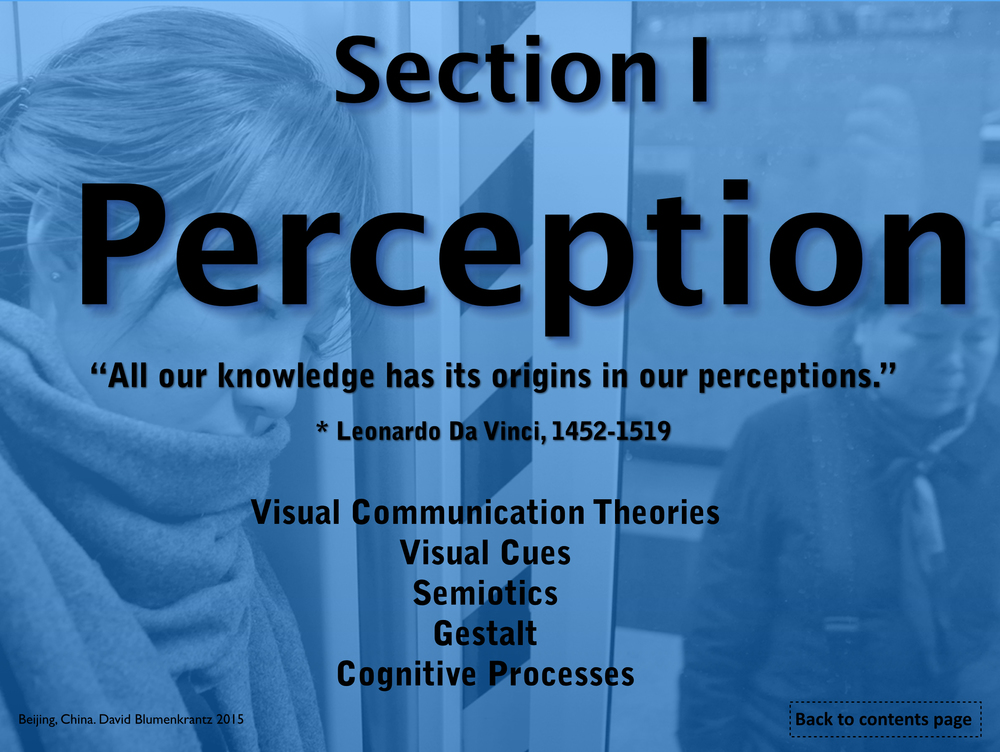 PERCPETION TITLE PAGE.jpg