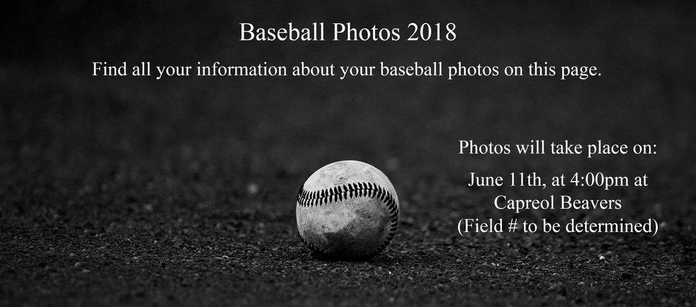 top page baseball banner2.jpg