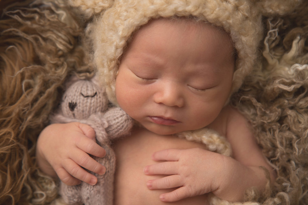 baby-boy-teddy-bear-sudbury-photographers