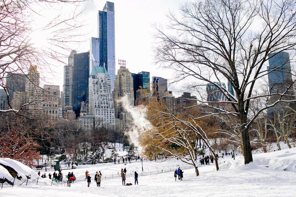 Juno Blizzard in Central Park