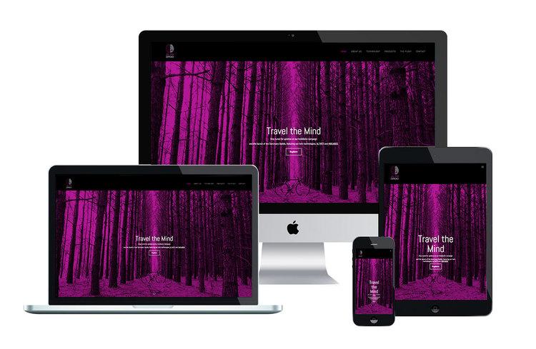 ALTR ERGO website design custom website