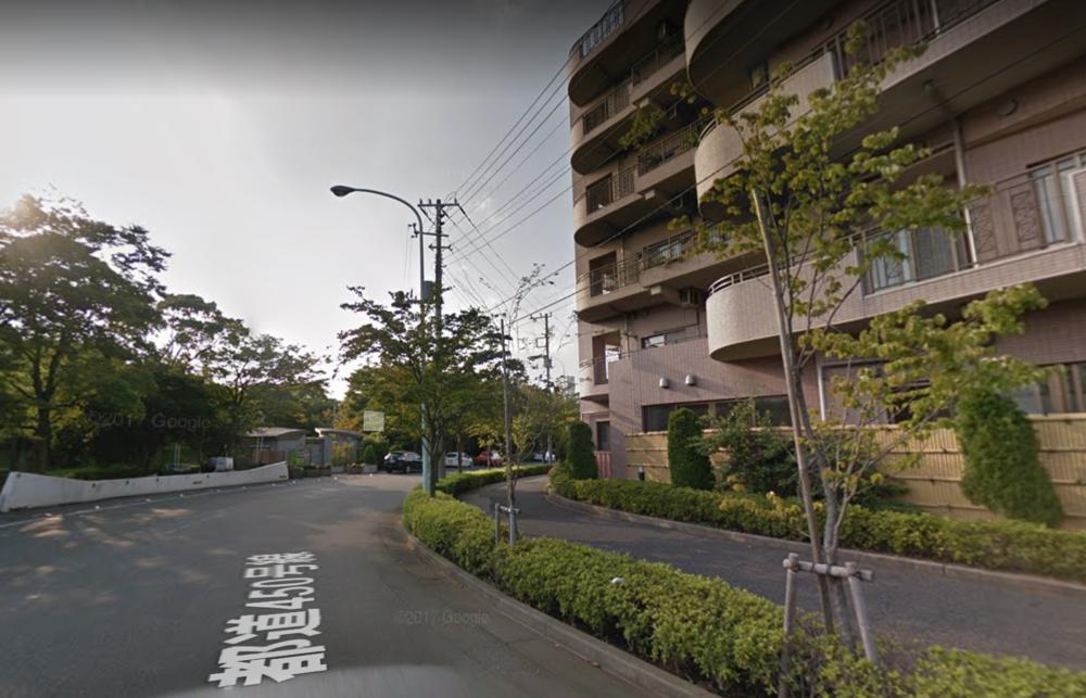 Tokyo Street View 6