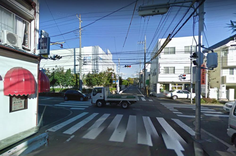 Tokyo Street View 9