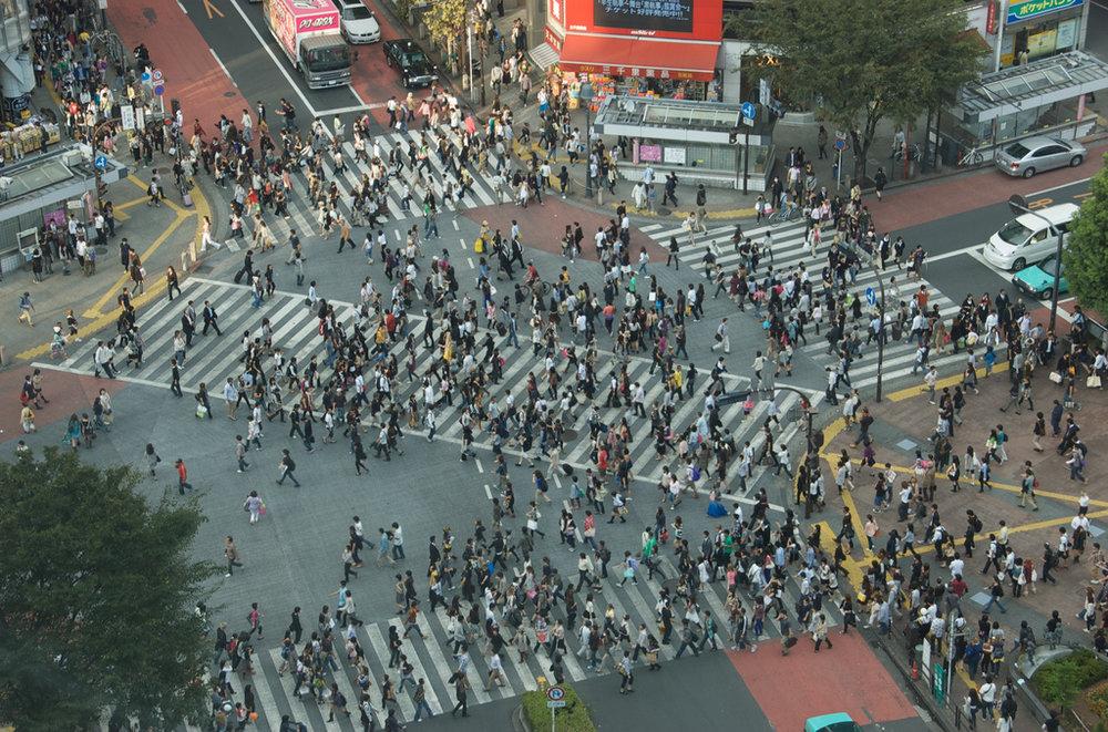 Tokyo Street Crossing