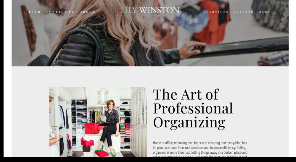Lily Winston Header Spotlight Website Refresh - Trig Industrial Design - Explore Prototype Build