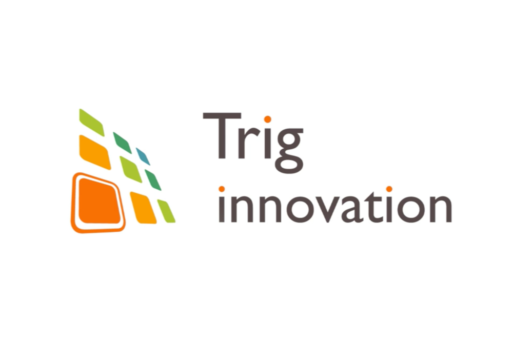 Trig Innovation Old Logo