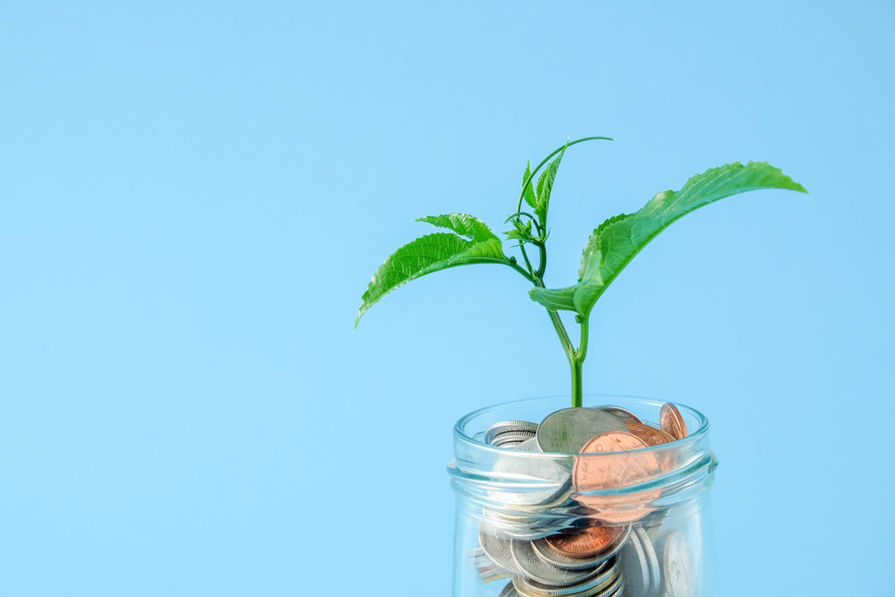 Cost to Hire a Product Designer Plant
