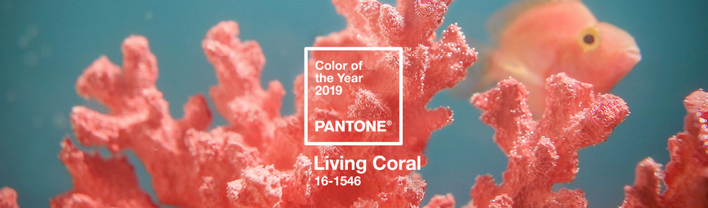 Pantone Living Coral Banner Industrial Design