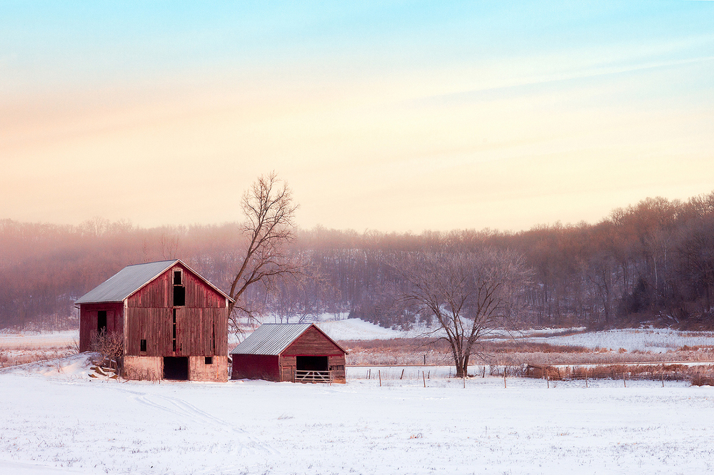 An old barn and shed grace this early morning, snowy, rural scene somewhere outside of Mount Horeb, Wisconsin.   → Buy This Print