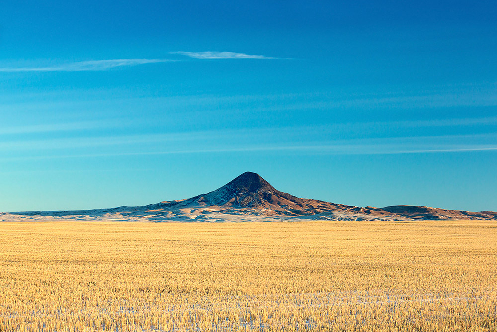 Gold Butte--part of the Sweet Grass Hills--rises from the middle of a wheat field north of Devon, Montana in Toole County. → Buy This Print