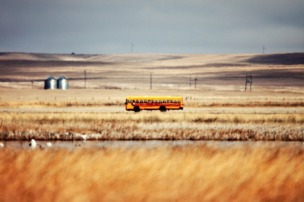 A school bus races down the highway early in the morning outside of Fairfield, Montana.   → Buy a Print