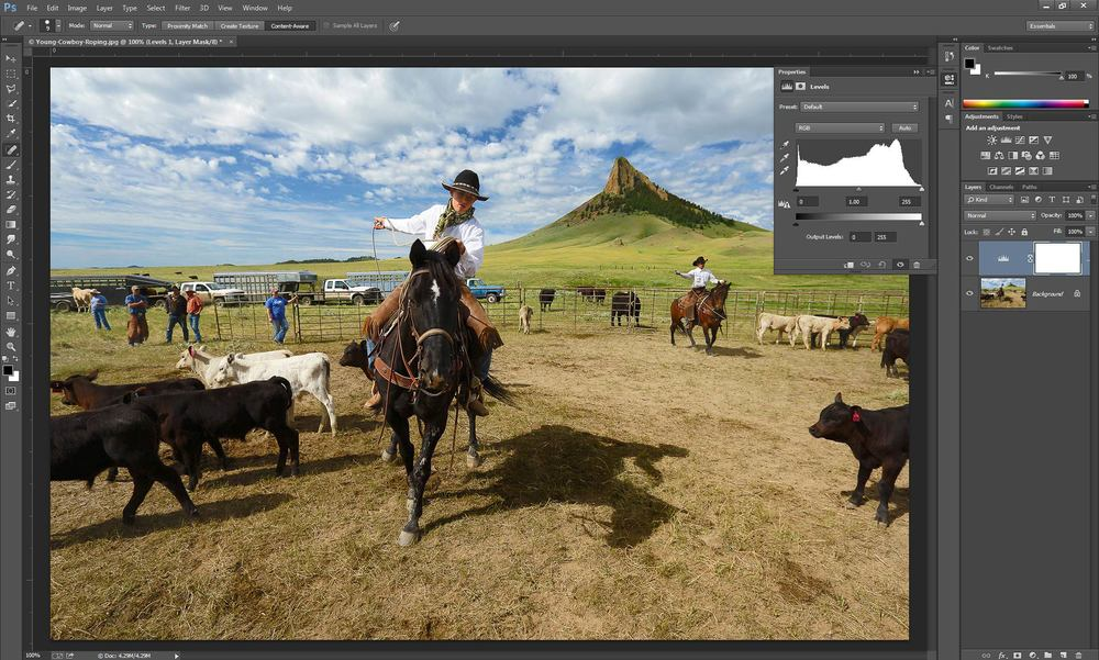 "Screen shot of editing the photograph ""Roping Away"" in Photoshop CC with a levels adjustment layer."