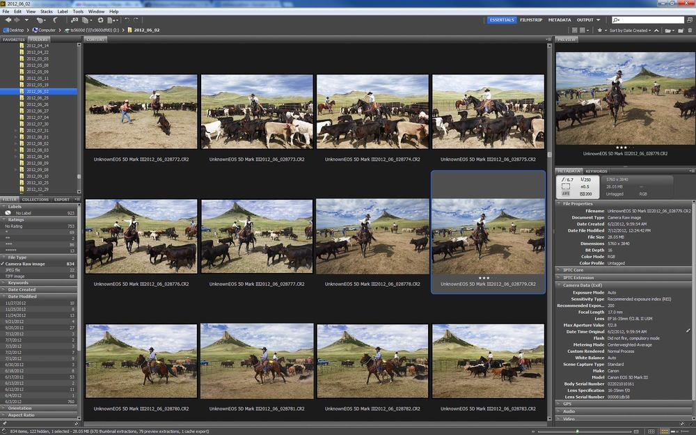 "Adobe Bridge, which shows the shots before and after the photo ""Roping Away."""
