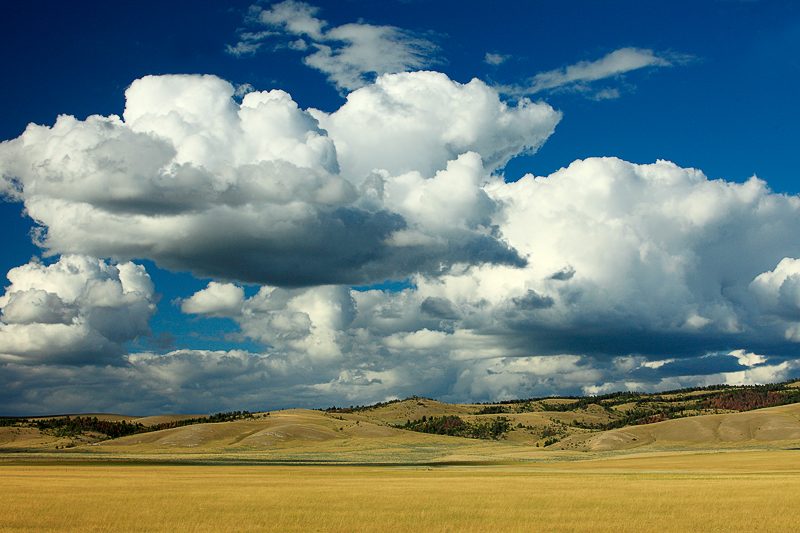 Big fluffy white clouds loom large over the hills near Newlan Creek Reservoir outside of White Sulphur Springs, Montana.    → License Photo