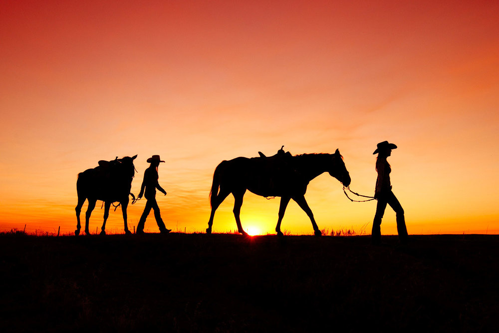 Montana cowgirls leading their horses off to the barn.    → Buy a Print