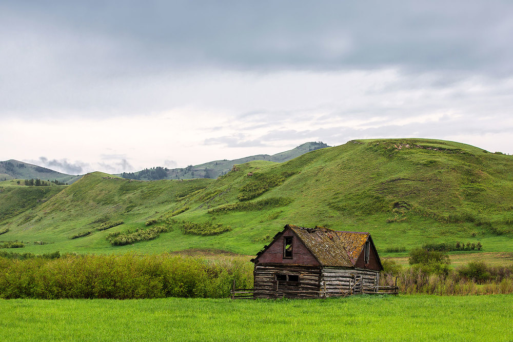An old homestead house falling apart deep inside the mountains on a rainy day near Lloyd, Montana.   → Buy a Print